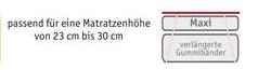 bnp-logo-auflagenh-he-maxi