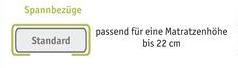 bnp-logo-spannbezug-standard